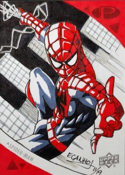 "Spiderman ""Peter Parker"""